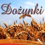 Dożynki Gminno – Parafialne Wojnowice 2015r.